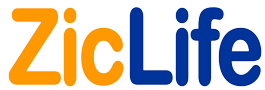 Logo Zic Life Website
