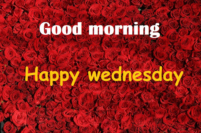good morning happy wednesday 1