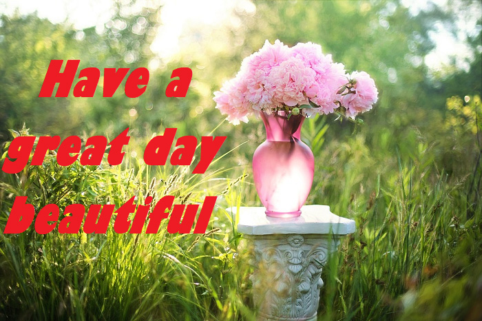 have a great day beautiful
