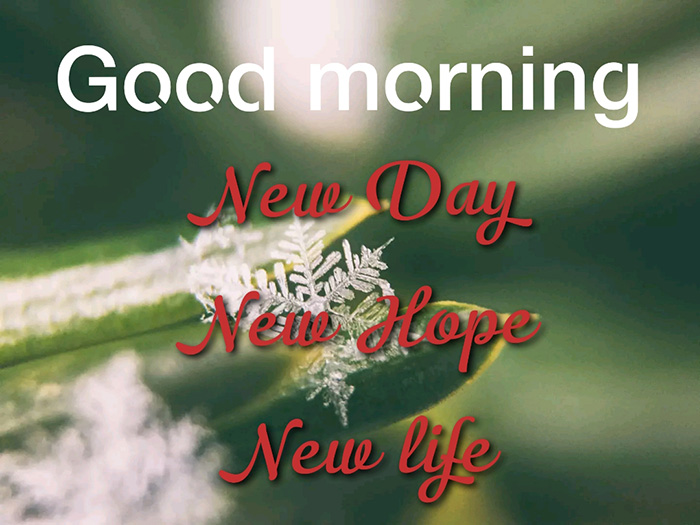 new day new hope new life