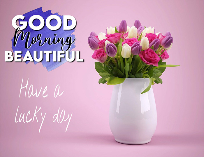 good morning beautiful have a lucky day