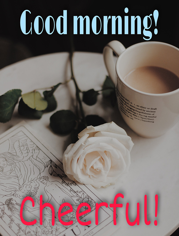 Good morning image with coffee cup and white rose