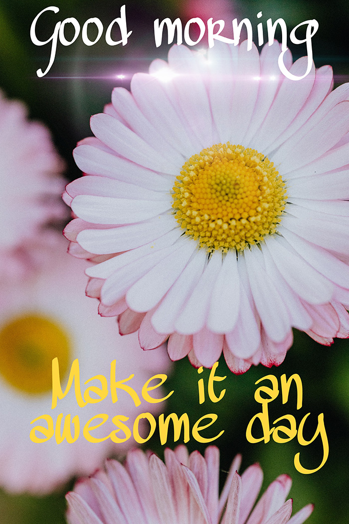 good morning make it an awesome day