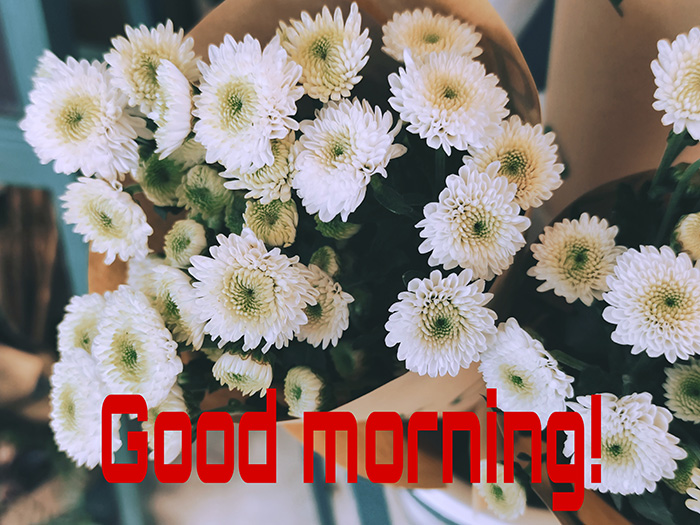 good morning with flowers 16