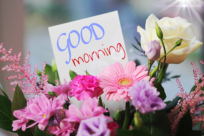 good morning with flowers 24