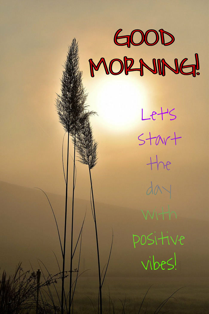 lest start the day with positive vibes