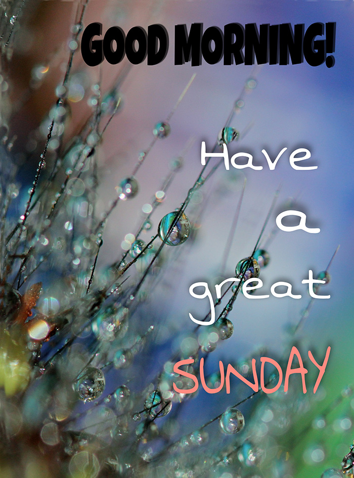 good-morning-have-a-great-sunday