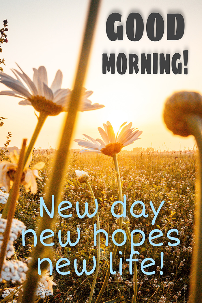 good-morning-new-day
