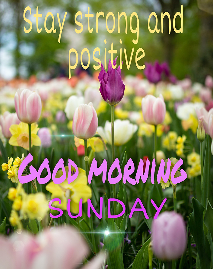 good morning sunday stay strong and positive