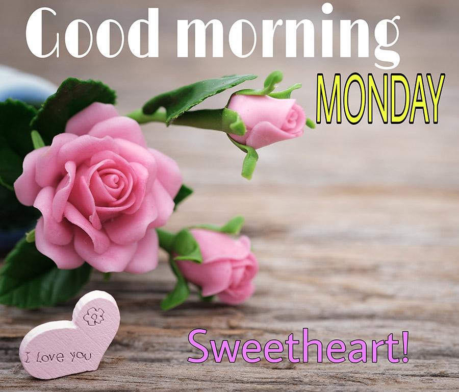Good morning monday with roses, heart