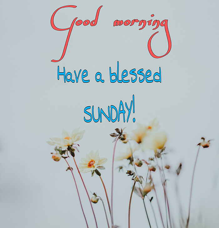 have-a-blessed-sunday