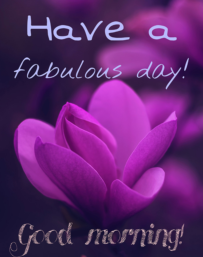 have-a-fabulous-day