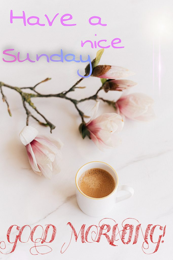 have a nice sunday good morning