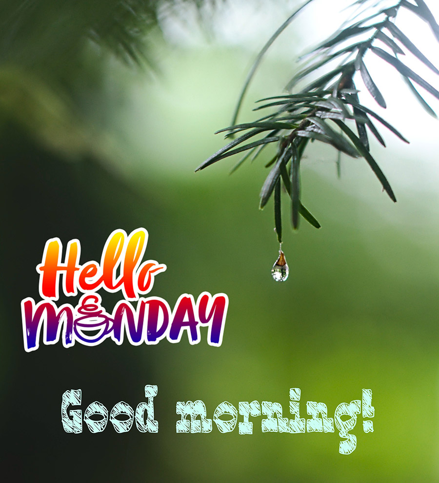 Good morning monday image with droplets