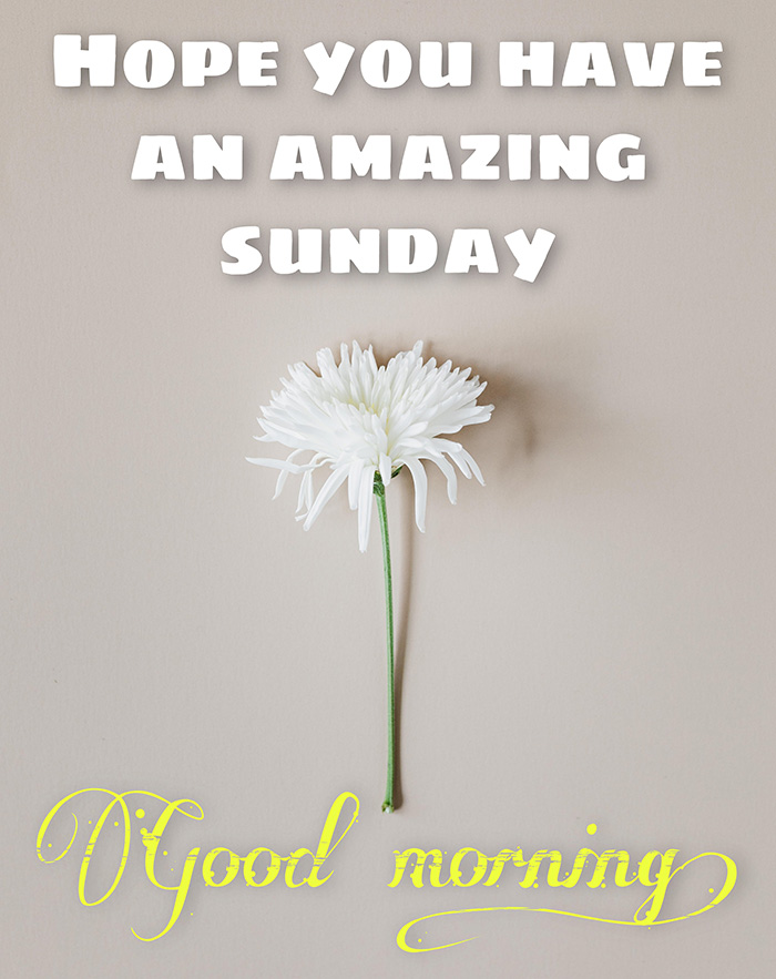 hope-you-have-an-amazing-sunday