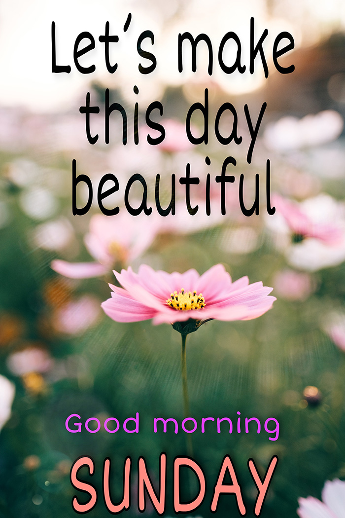 lets-make-this-day-beautiful-good-morning-sunday