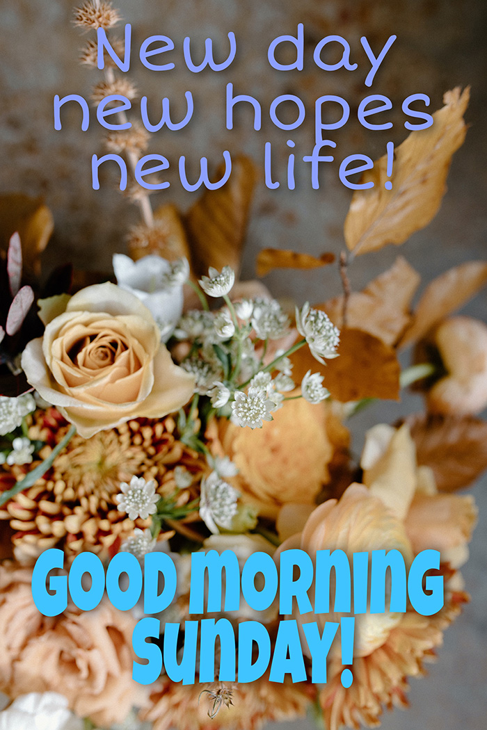new-day-new-hope-new-life
