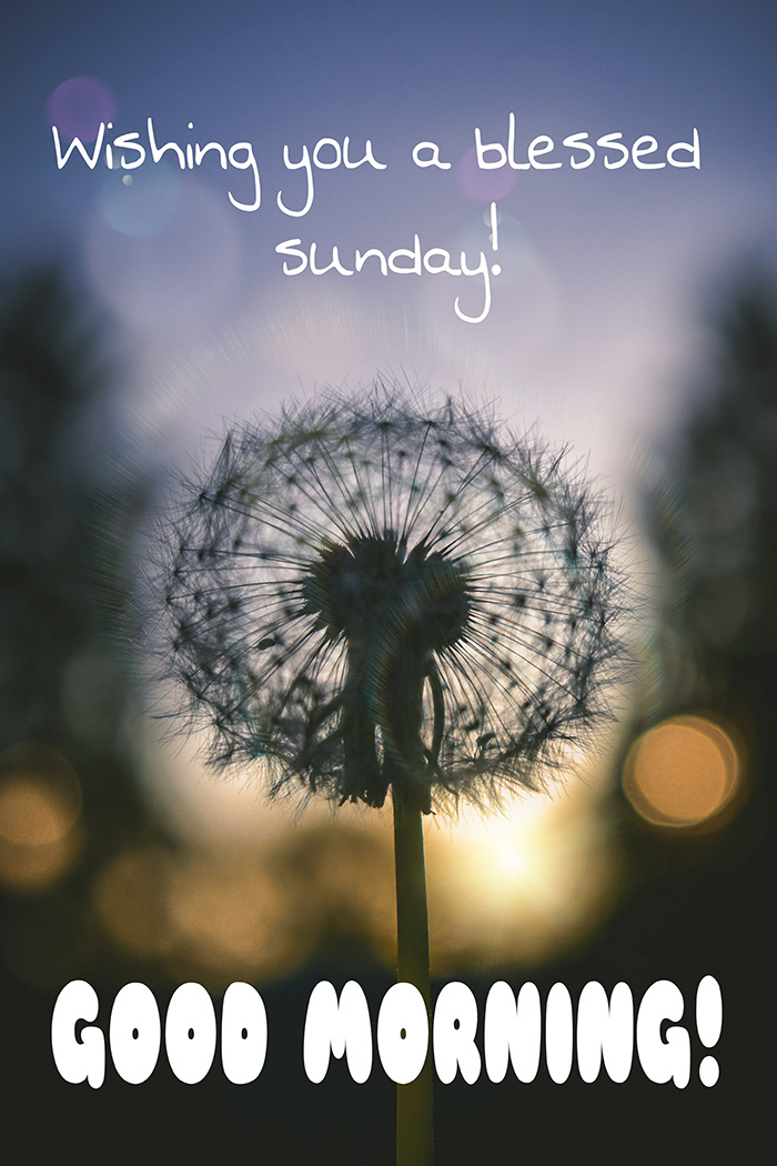 wishing-you-a-blessed-sunday