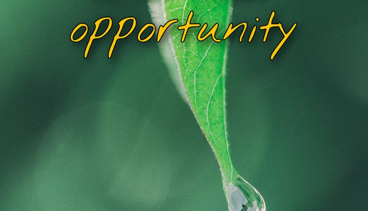 every-new-day-is-a-new-opportunity-good-morning-thursday
