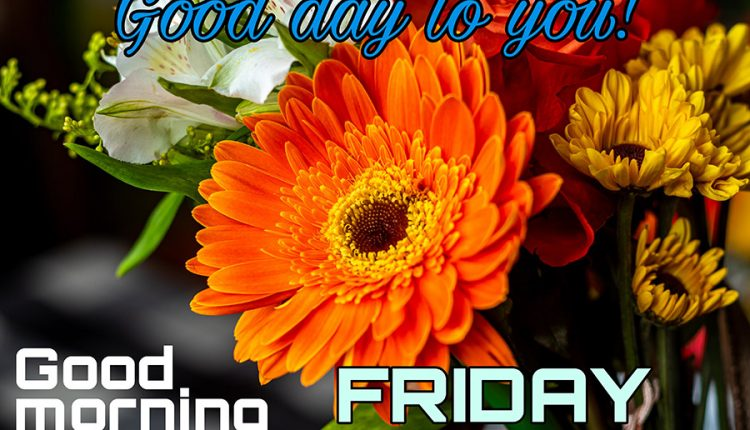 good-day-to-you-good-morning-friday
