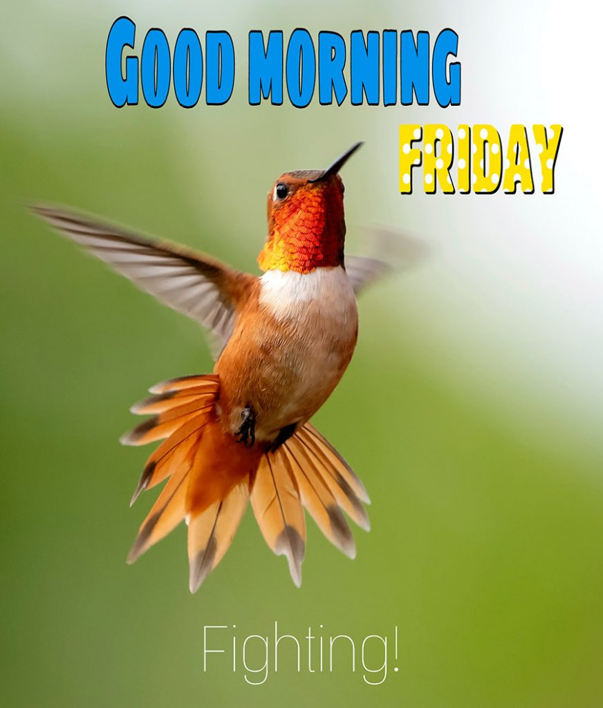 Good morning friday image with hummingbirds are flying