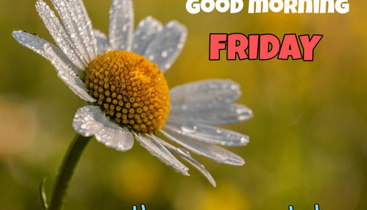 good-morning-friday-have-an-awesome-day