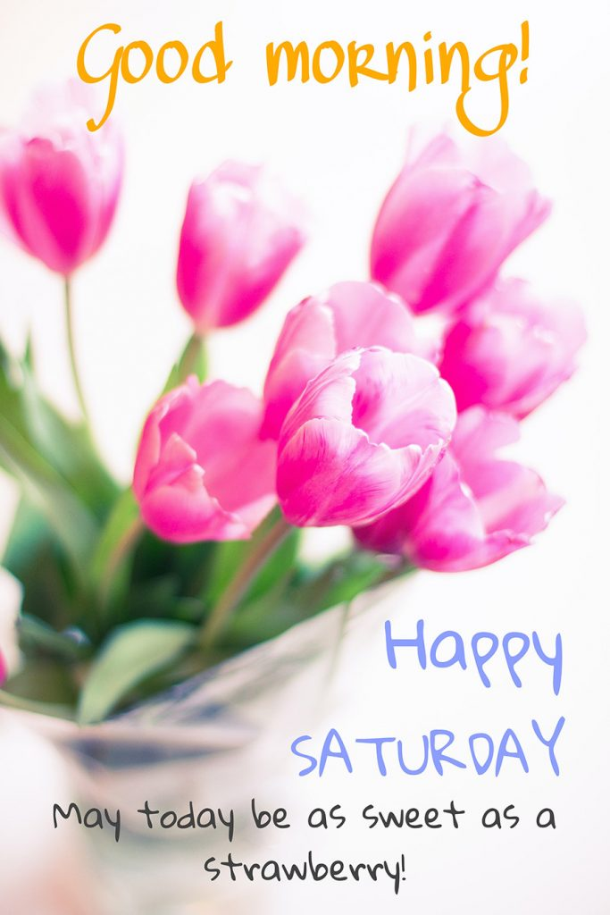 Good morning saturday image with tulips