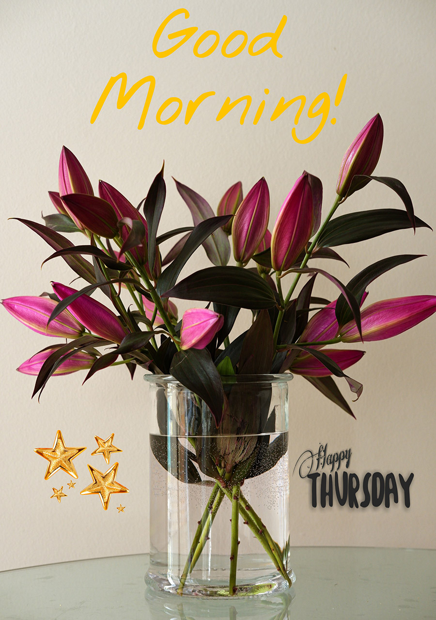 Good morning thursday image with lilies