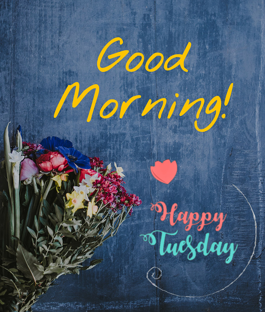 Good morning tuesday image with bunch of colorful flowers