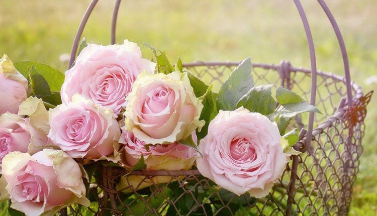 good-morning-image-with-basket-of-roses