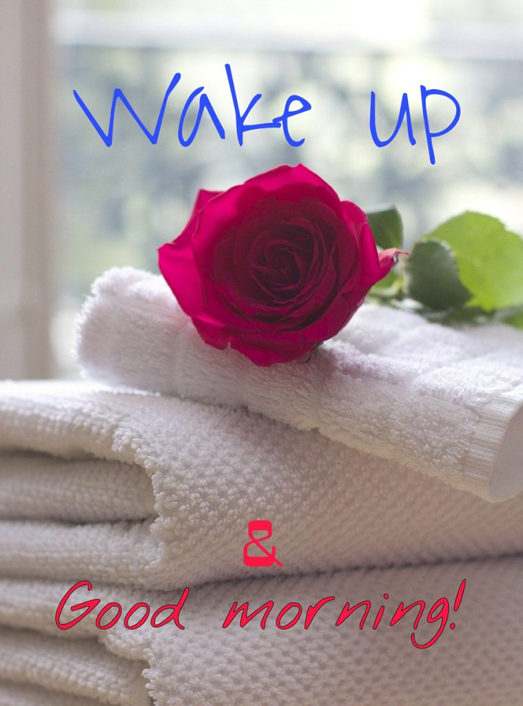 Wake up & Good morning image with rose and towel