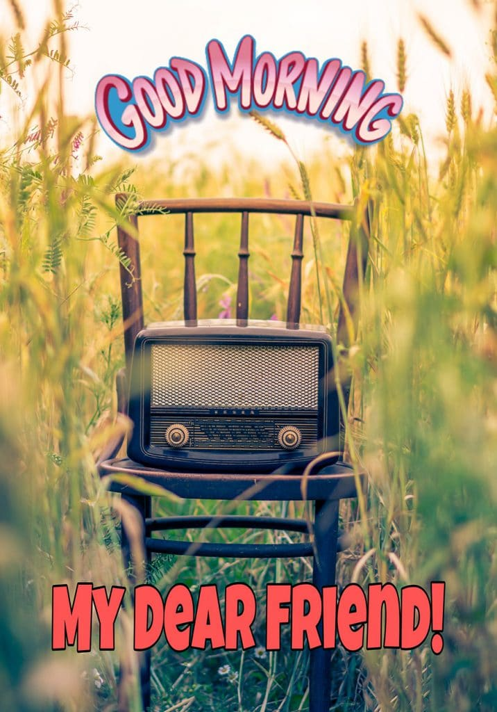 Good morning friend image with radio on the chair and the meadow