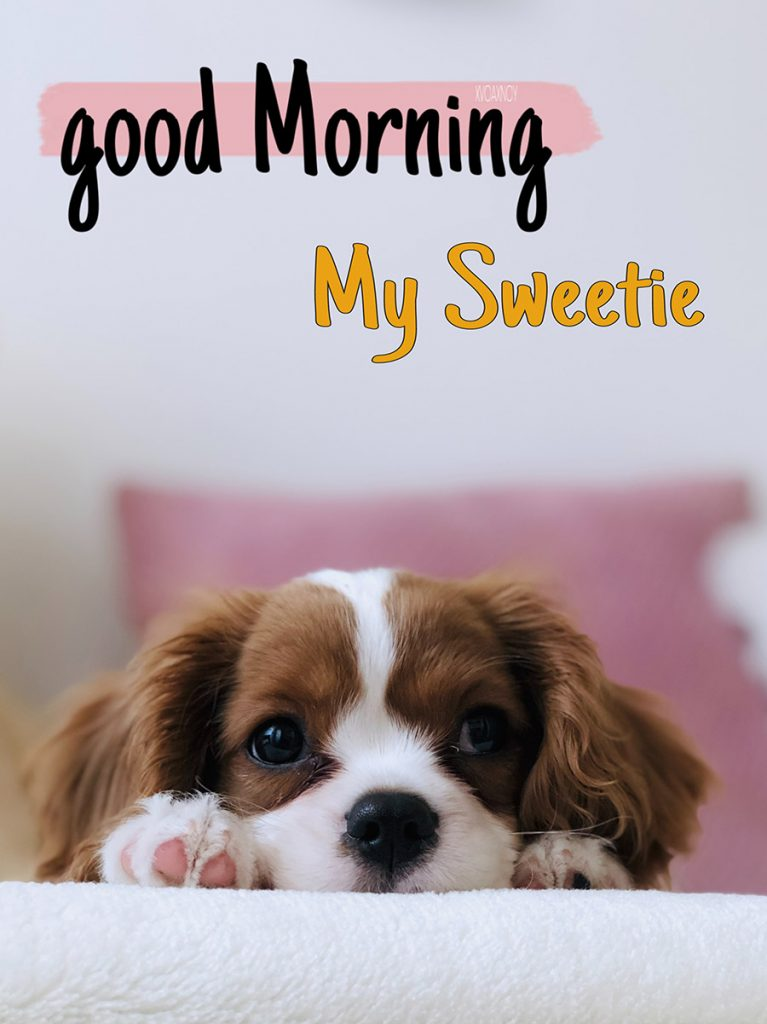 Good morning sweetheart image with puppy