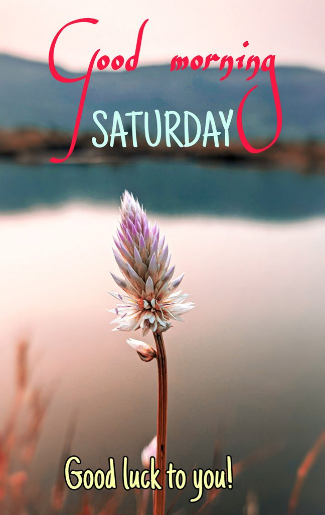 Good morning saturday image with flower
