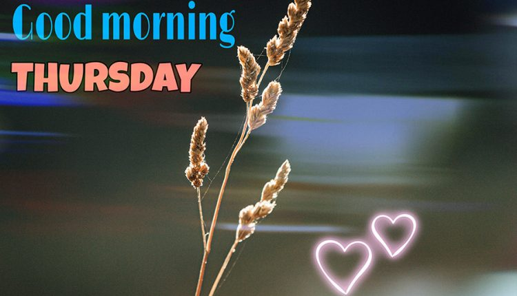 good-morning-thursday-hope-your-day-is-perfect