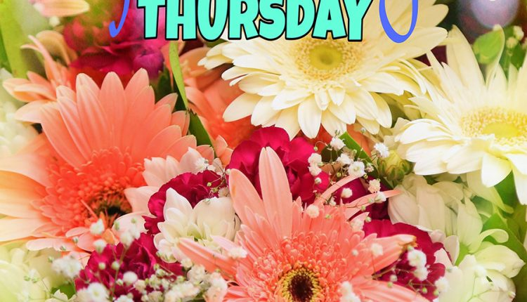 good-morning-thursday-wishing-you-the-best-for-the-day-ahead
