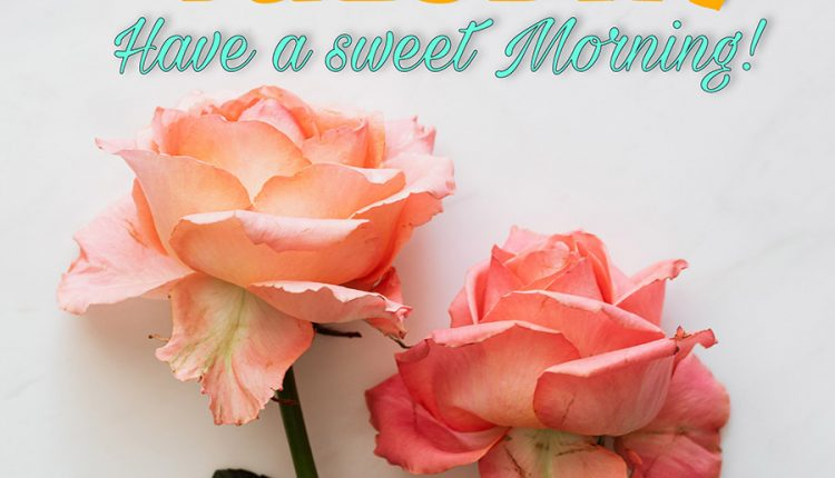 good-morning-tuesday-have-a-sweet-morning