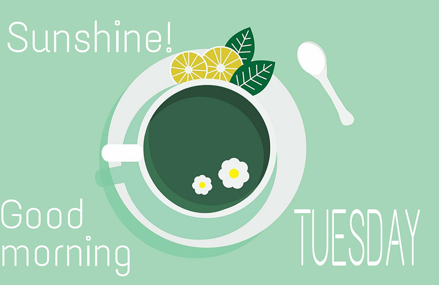 Good morning tuesday image with tea cup on green background