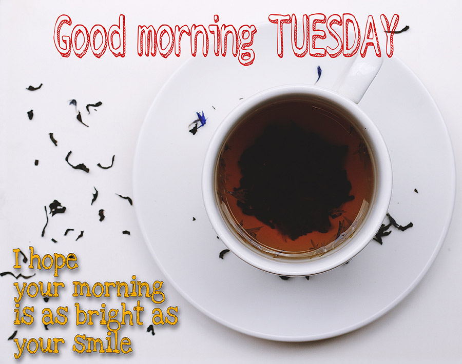 Good morning tuesday image with tea cup on white background