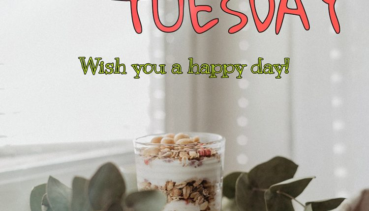 good-morning-tuesday-wish-you-a-happy-day
