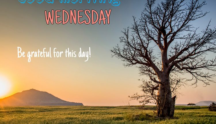 good-morning-wednesday-be-grateful-for-this-day
