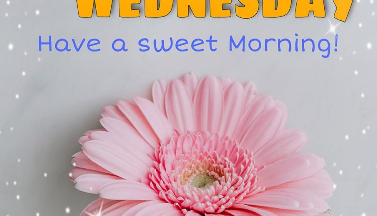 good-morning-wednesday-have-a-sweet-morning