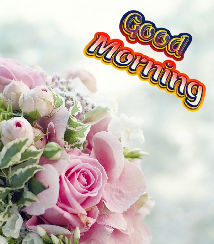 Good morning image with bunch of roses