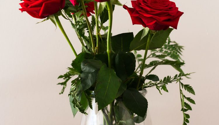 good-morning-with-red-roses-vase