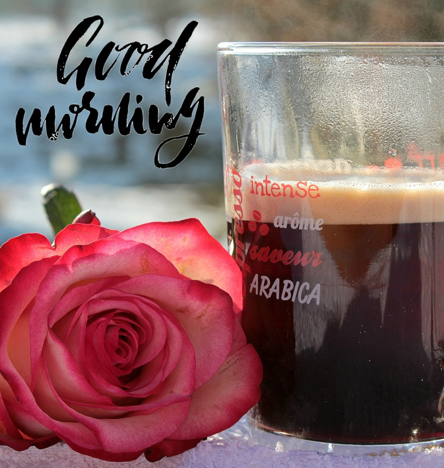 Good morning rose and coffee cup