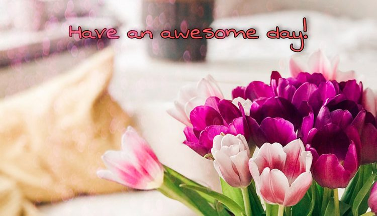 good-morningwednesday-have-an-awesome-day