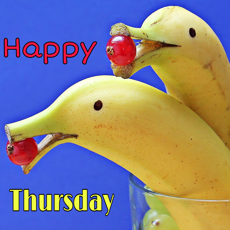 Good morning thursday image with bananas look like dolphins