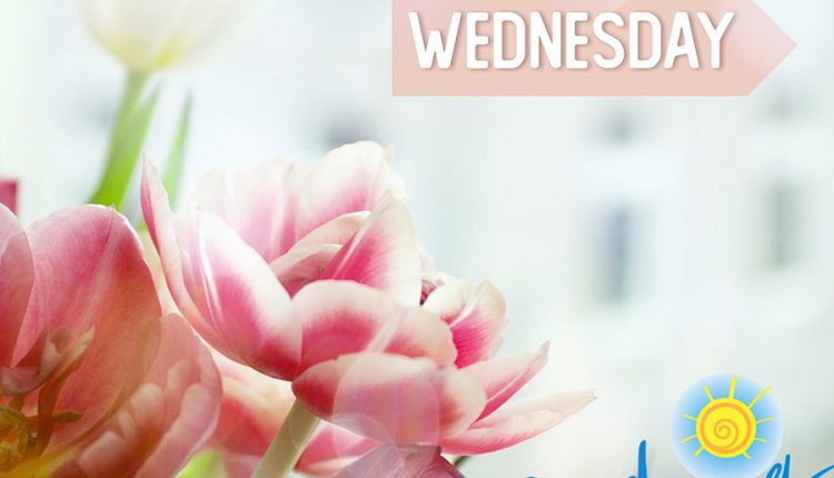 have-a-great-wednesday-good-morning