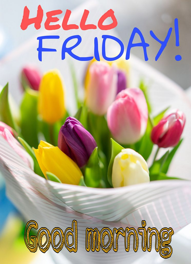 Good morning friday image with tulips