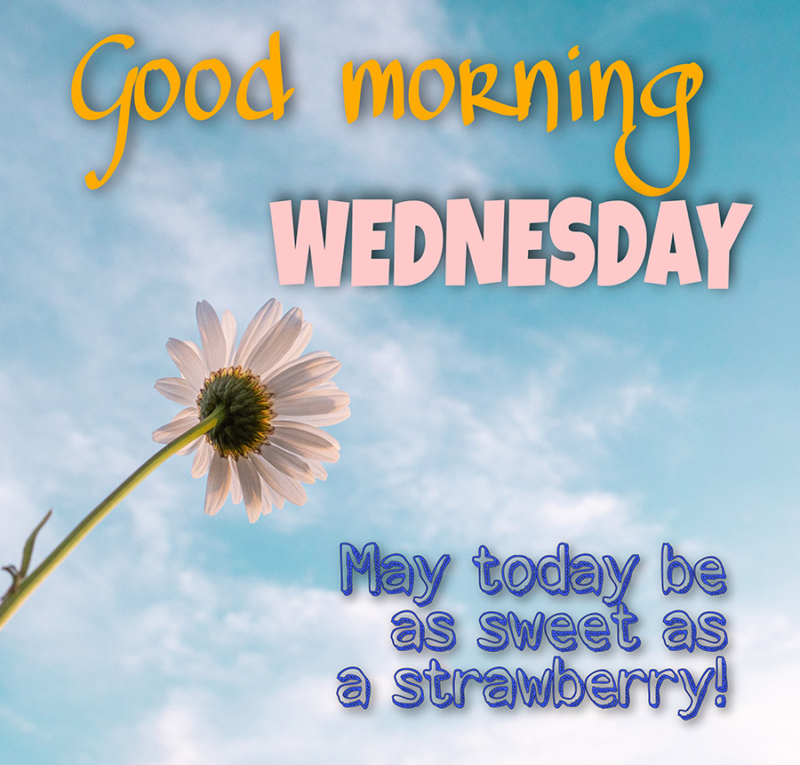 Good morning wednesday image with flower in the sky